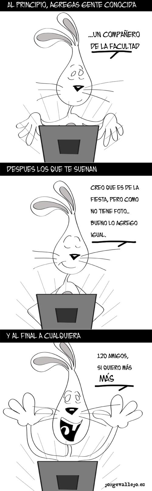 fases facebook conejosos creado por jorge vallejo